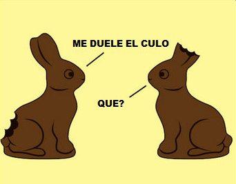 http://3tigrestristes.wordpress.com/2009/12/18/chiste-del-mes-de-enero-los-conejos-de-chocolate/